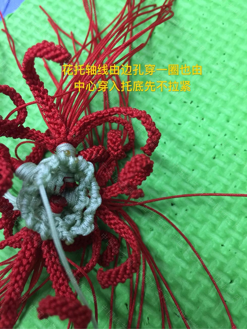 中国结论坛 曼珠沙华教程(三)  立体绳结教程与交流区 154712qdgqfsbfvapgskd7