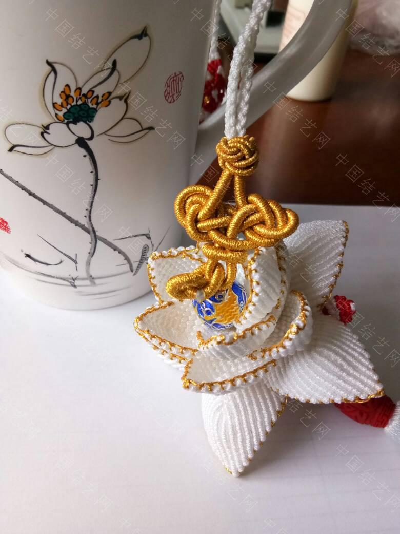 中国结论坛 美到仙儿了的白莲花  作品展示 150440gecevkpva01pcwxx