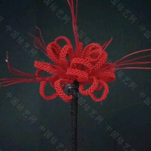 中国结论坛 彼岸花  作品展示 230840fjxtq521hm88tb2t