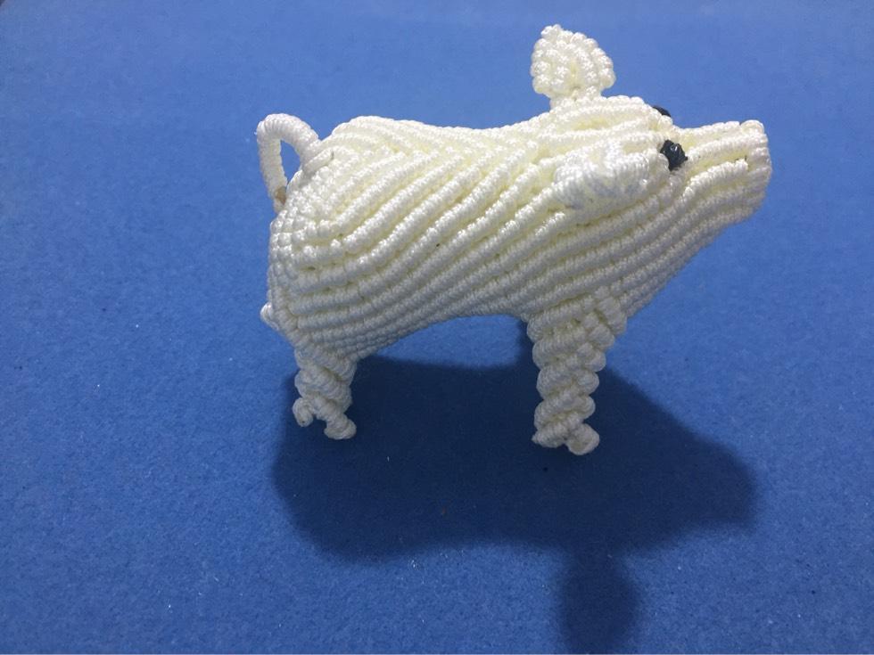 中国结论坛 猪猪和狗狗  作品展示 230430kbmvo1b2ykkvjx8o