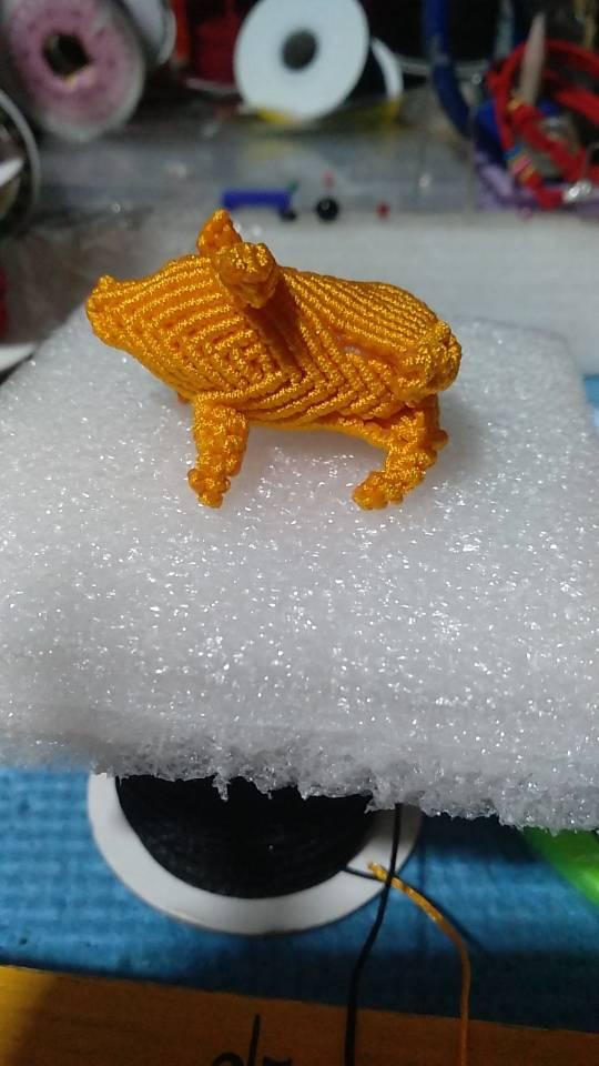 中国结论坛 我的猪是个闭嘴的家伙  作品展示 010624j03siittzlrk7pt3