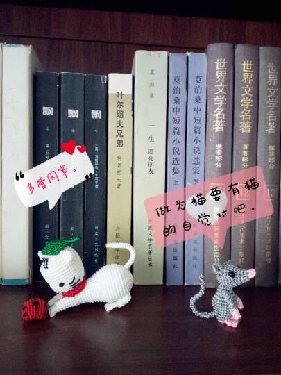 中国结论坛 猫和老鼠  作品展示 154547fesc9ccsc3tlessm