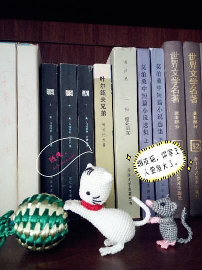 中国结论坛 猫和老鼠  作品展示 154549hm3kab9muu4sajbs