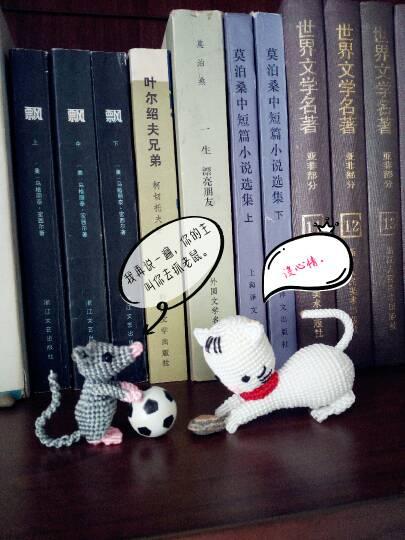 中国结论坛 猫和老鼠  作品展示 154550jk1agdfcmgrc0hfg