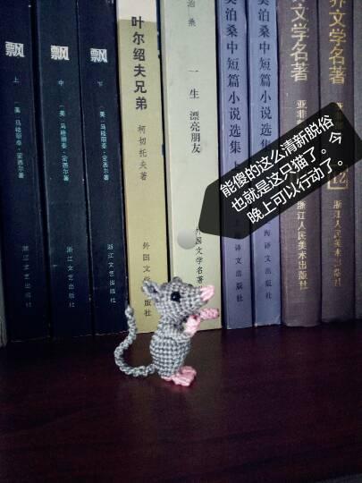 中国结论坛 猫和老鼠  作品展示 154550nvsmwmmvi4ghgeei