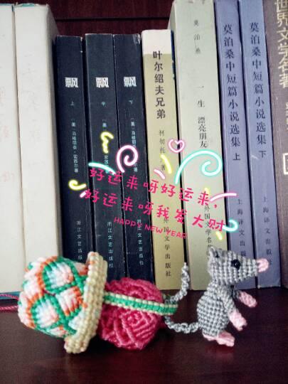 中国结论坛 猫和老鼠  作品展示 154552zb6vmi7grgsjgbaz
