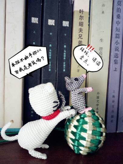 中国结论坛 猫和老鼠  作品展示 154553b28uhi57ztknkk8s
