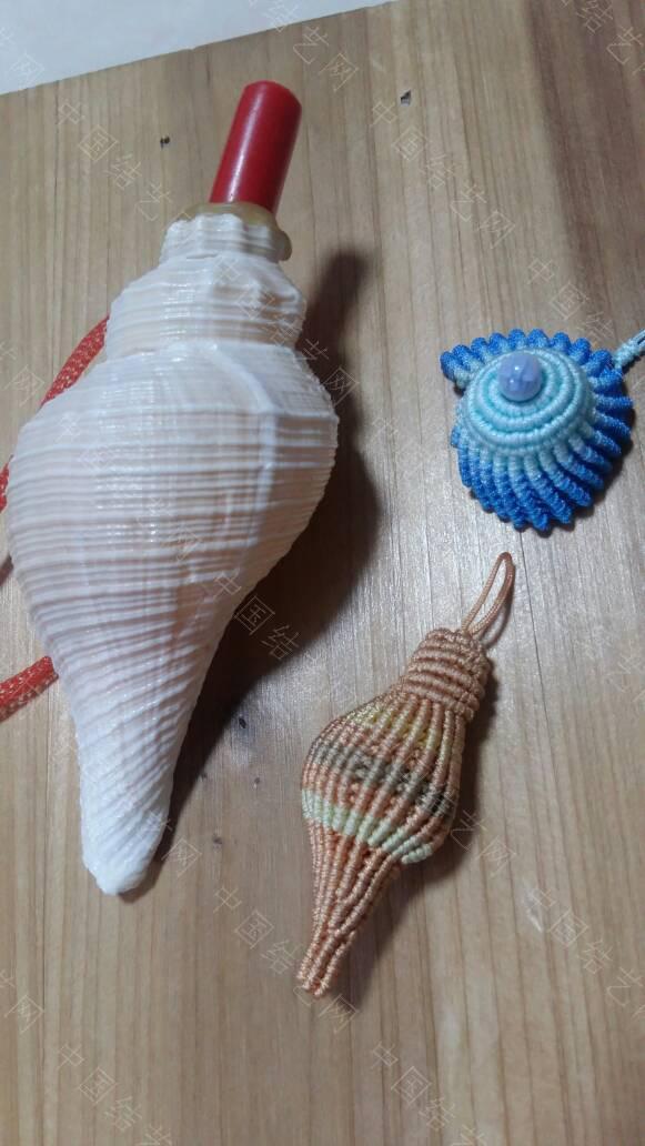 中国结论坛 海螺  作品展示 163501miwtrtwzxpptub3b