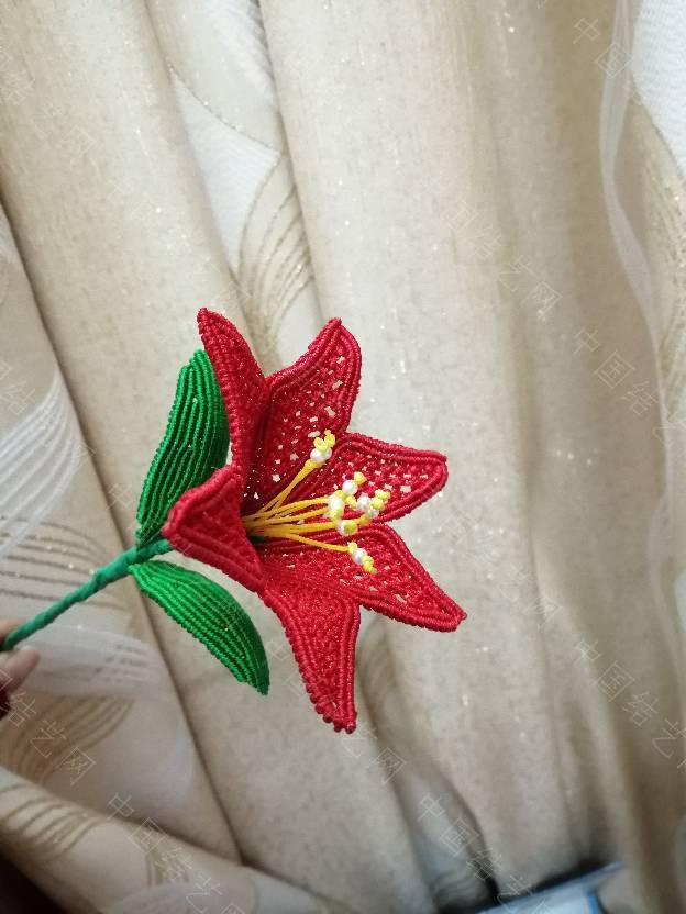 中国结论坛 效仿的百合花  作品展示 150800mdoo18700o1uv0w9