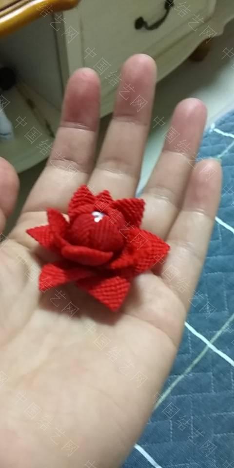 中国结论坛 做了朵莲花  作品展示 195030b7ioqigug6g3m3g3