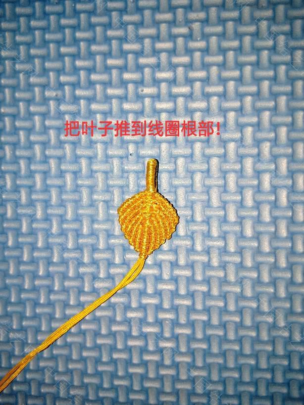 中国结论坛 金叶子教程  图文教程区 184548d060556zk5nz530k