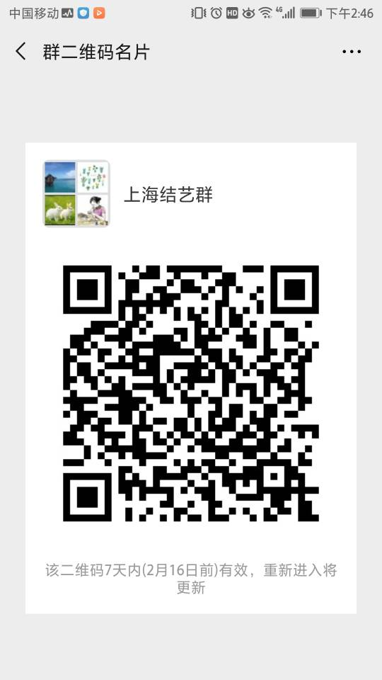 中国结论坛 昨天建了个上海群  结艺网各地联谊会 144941milf1ll6e0twclm0