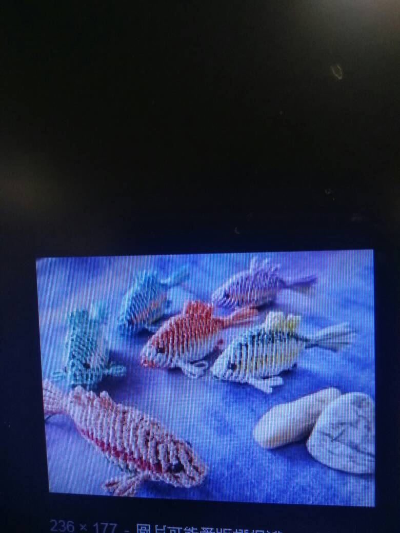 中国结论坛 有没有这个鱼的教程,好喜欢  结艺互助区 224710vr9altqtmtp5m29l