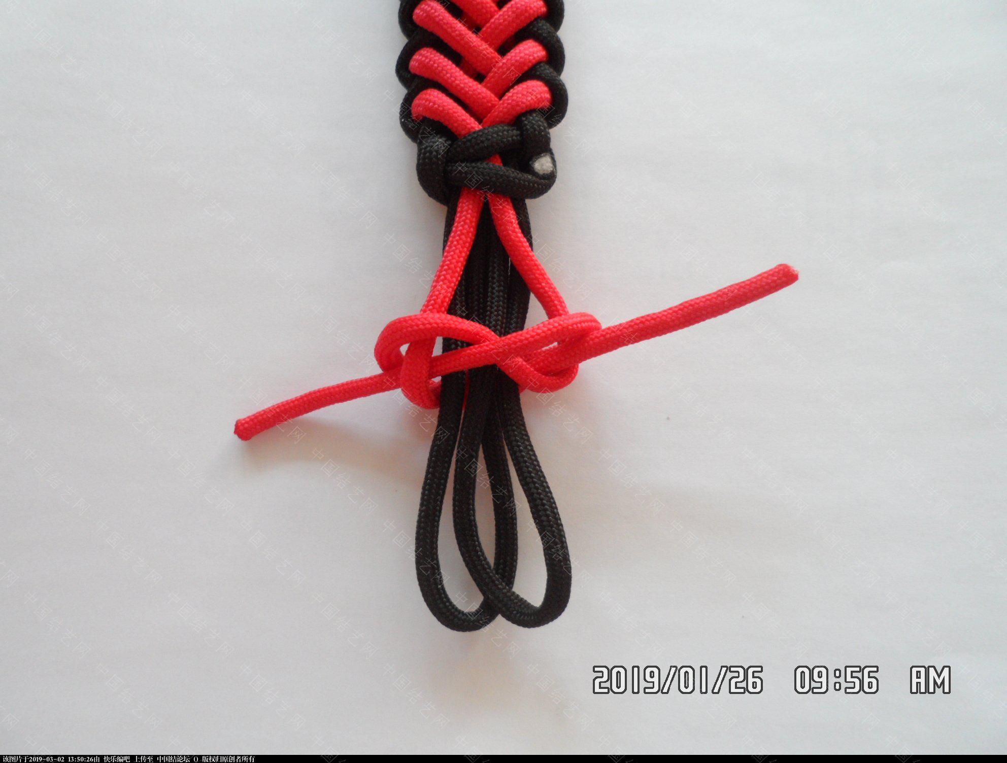 中国结论坛 一款漂亮的伞绳挂件(5)  图文教程区 132314lsxbvuc2oonad2xf