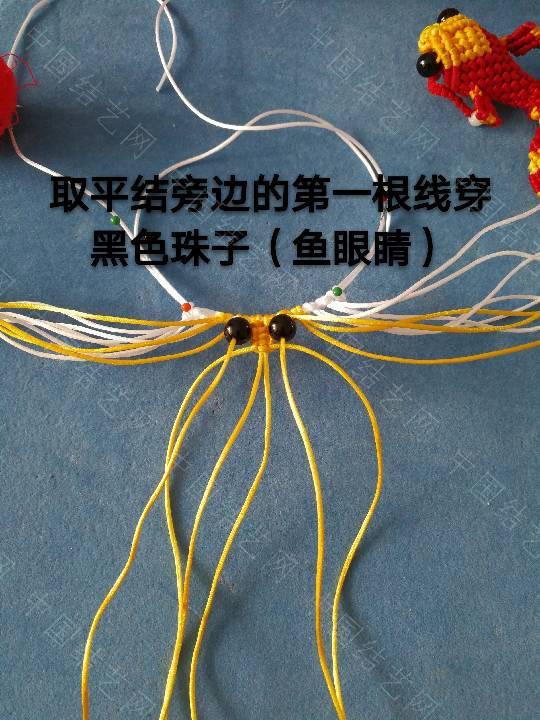 中国结论坛 鱼教程  立体绳结教程与交流区 222256a4uqhy8hqa7cgi88