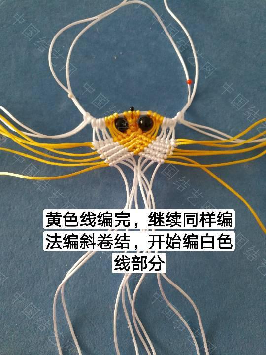 中国结论坛 鱼教程  立体绳结教程与交流区 222309vmdpzon9mqoj1x9y