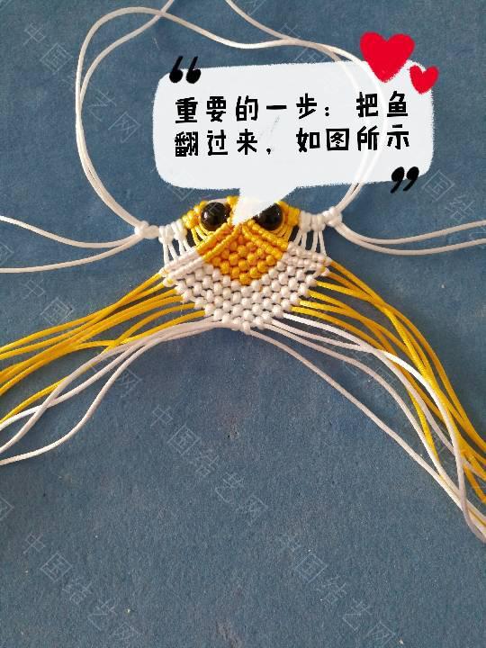中国结论坛 鱼教程  立体绳结教程与交流区 222310x3euo6noeacdy8vo
