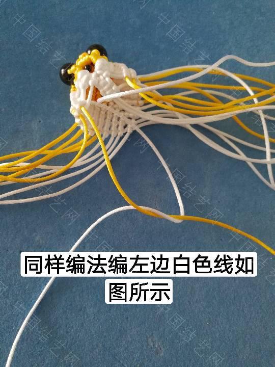中国结论坛 鱼教程  立体绳结教程与交流区 222313m8ivtv34um8131is
