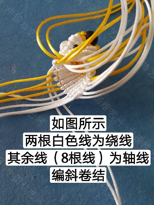 中国结论坛 鱼教程  立体绳结教程与交流区 222315lppspbff7nnekdni