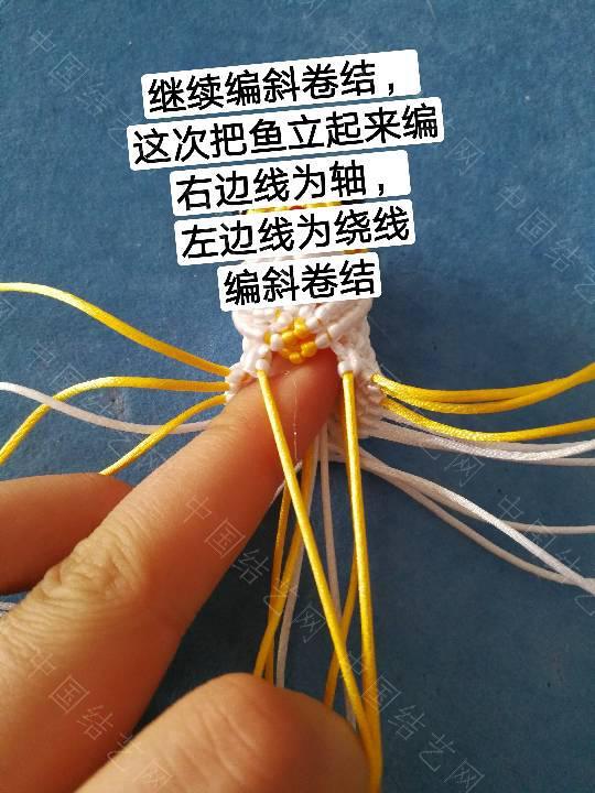 中国结论坛 鱼教程  立体绳结教程与交流区 222320qz2z3xppd0f5d2h0