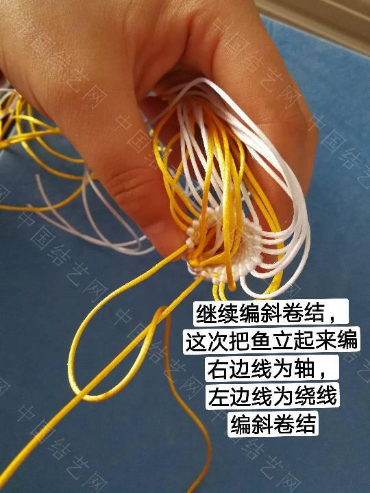 中国结论坛 鱼教程  立体绳结教程与交流区 222321pml3161p6p6apteu