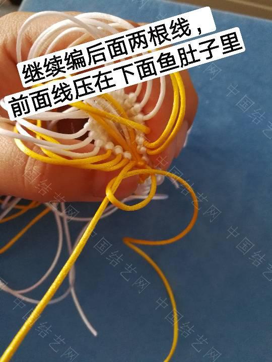 中国结论坛 鱼教程  立体绳结教程与交流区 222322f6l6r56huxb7o4az