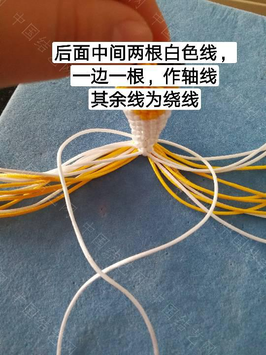 中国结论坛 鱼教程  立体绳结教程与交流区 222325m1mtc8britqz9bx0
