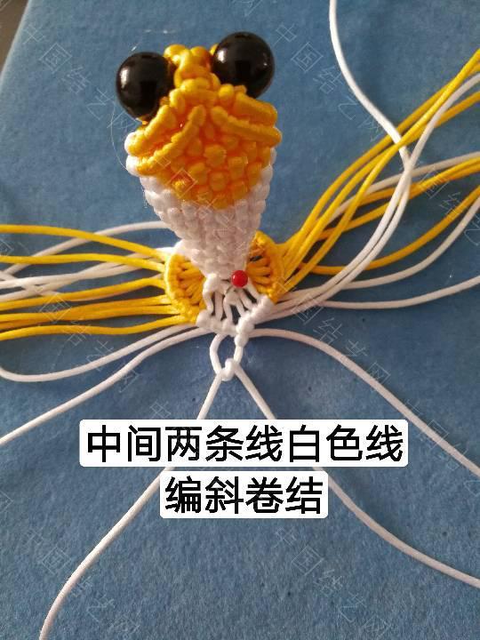中国结论坛 鱼教程  立体绳结教程与交流区 222326zi9dffrfcjdcdrqz