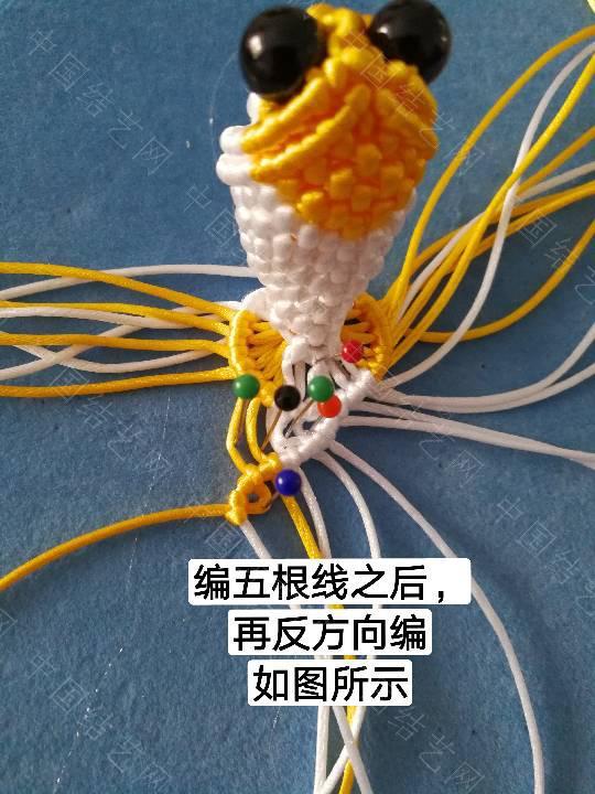 中国结论坛 鱼教程  立体绳结教程与交流区 222327tebjp2iyi8ytecij