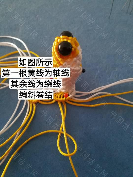 中国结论坛 鱼教程  立体绳结教程与交流区 222329ntell4gteeqle4eh