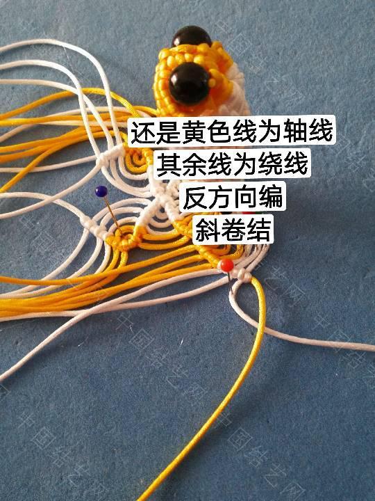 中国结论坛 鱼教程  立体绳结教程与交流区 222330mbcexwwewb5exttk