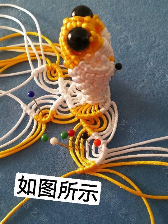 中国结论坛 鱼教程  立体绳结教程与交流区 222331h031h3mebu21wnue