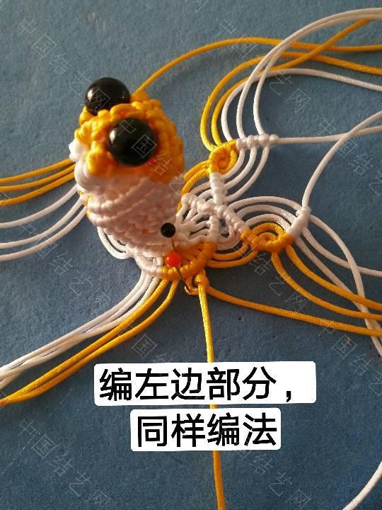 中国结论坛 鱼教程  立体绳结教程与交流区 222331orenpsd9665prk69