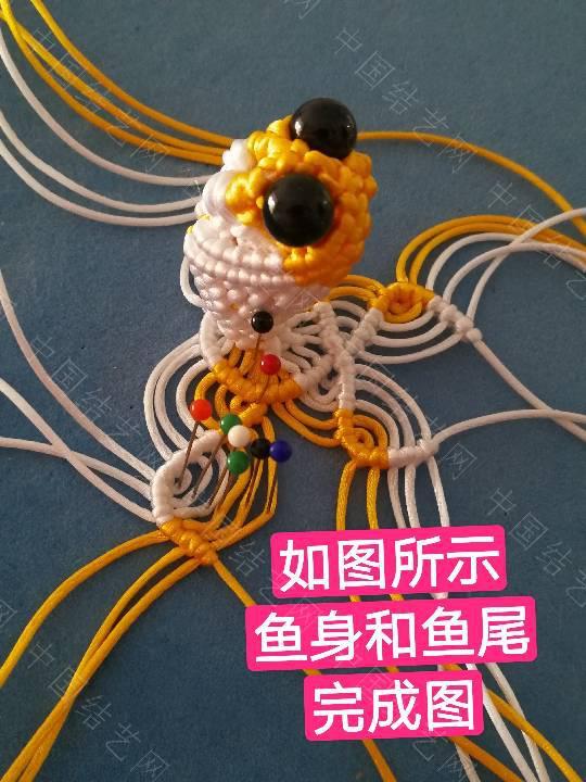 中国结论坛 鱼教程  立体绳结教程与交流区 222332m55go88dm8dcdwng