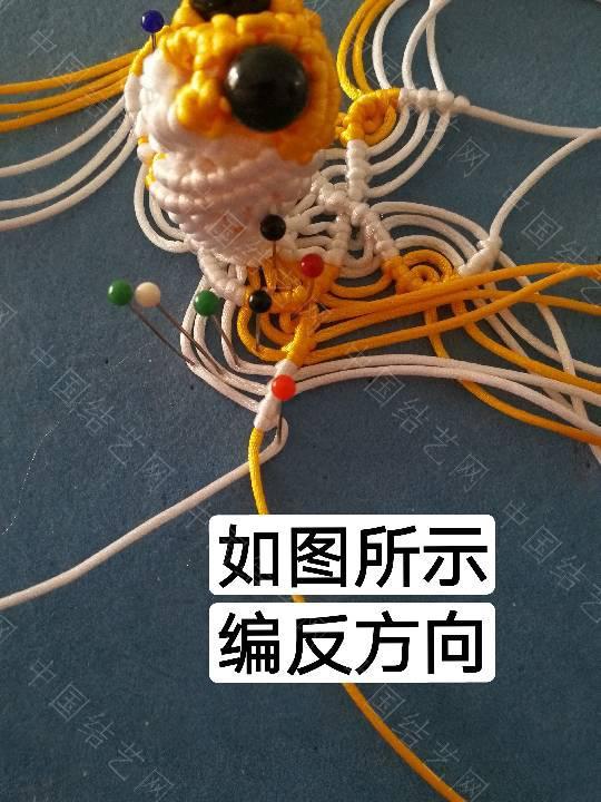 中国结论坛 鱼教程  立体绳结教程与交流区 222332mb34f5f2nz54y3oz