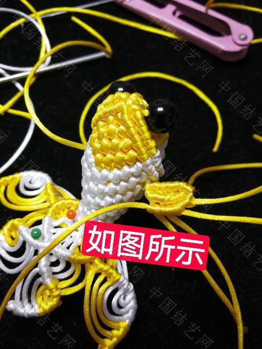 中国结论坛 鱼教程  立体绳结教程与交流区 222335eoiozk1b0j57a5eg