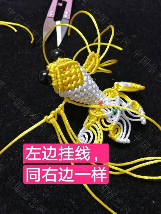 中国结论坛 鱼教程  立体绳结教程与交流区 222336ht1rg4wm1tjddg44