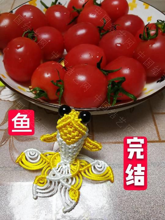 中国结论坛 鱼教程  立体绳结教程与交流区 222338iydqpdcqdvzbbysq