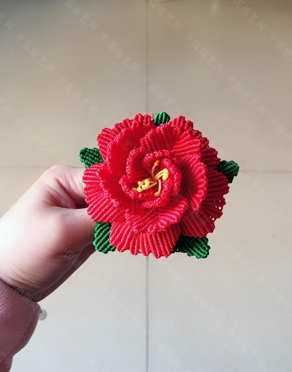 中国结论坛 花卉  作品展示 223851l6lswwsusxk99ema
