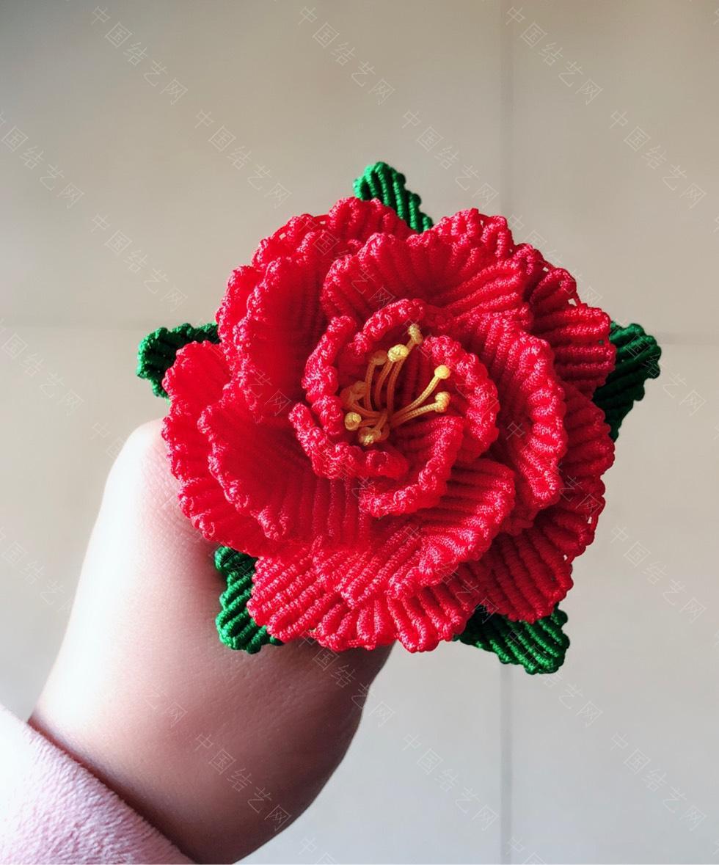 中国结论坛 花卉  作品展示 223852b2nvvpvu83zkpzyp