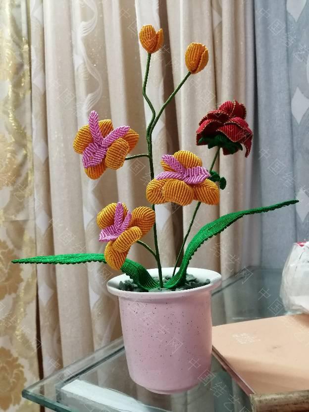 中国结论坛 我的花花世界  作品展示 200219jathft4hegs6868u