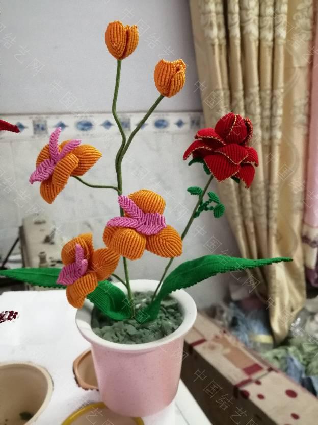 中国结论坛 我的花花世界  作品展示 200220lzzrjz0ti9ot2z9d