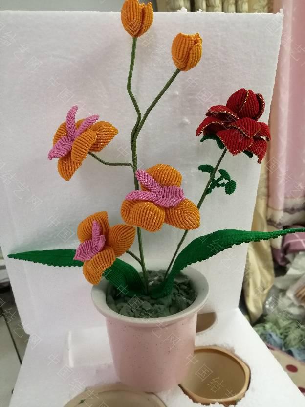 中国结论坛 我的花花世界  作品展示 200221v3hbesbk17iz7yzm