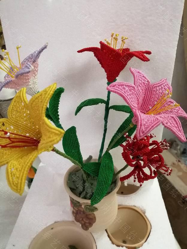中国结论坛 我的花花世界  作品展示 200222oejpyxldjz9kl7yz