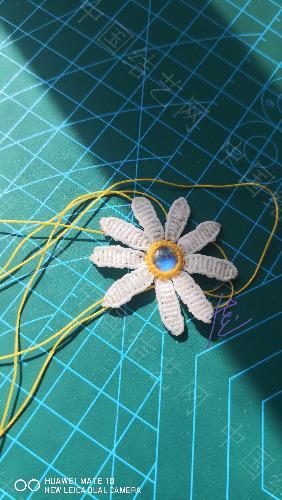 中国结论坛 我的小雏菊一枚 我的,小雏菊,一枚,小雏菊的花语是什么,小雏菊代表什么意思 作品展示 155108y414ojqjqxf9iip2