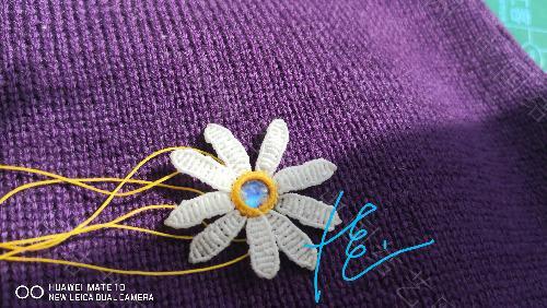 中国结论坛 我的小雏菊一枚 我的,小雏菊,一枚,小雏菊的花语是什么,小雏菊代表什么意思 作品展示 155200hfnzfoiwi00vs42o