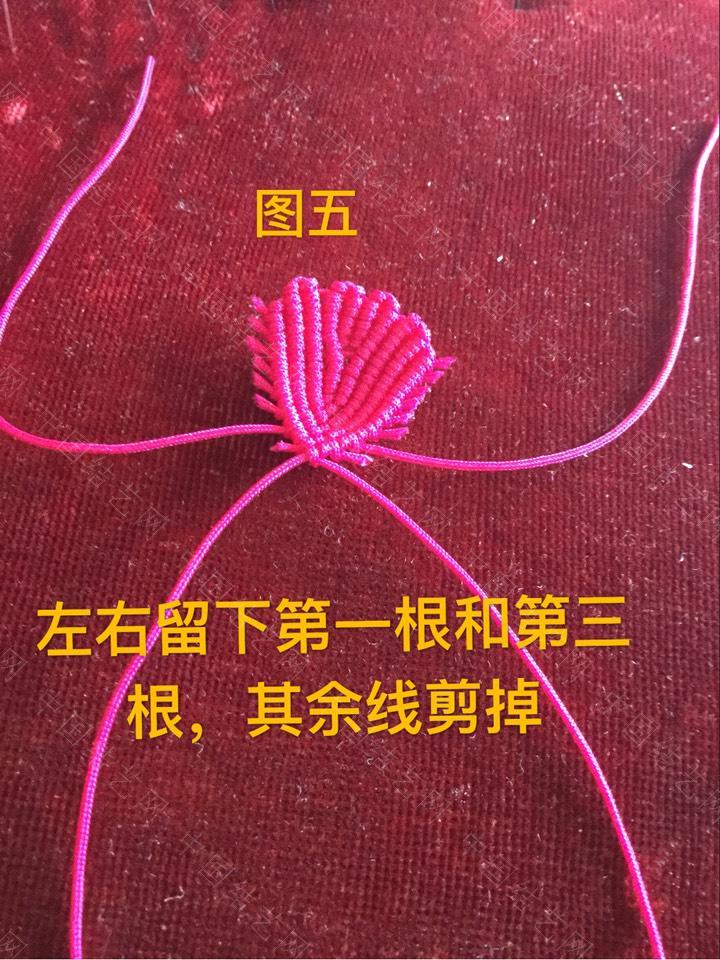 中国结论坛 新编牡丹花瓣编法与教程(续)  立体绳结教程与交流区 113106agagyzz5hgfzdrxh
