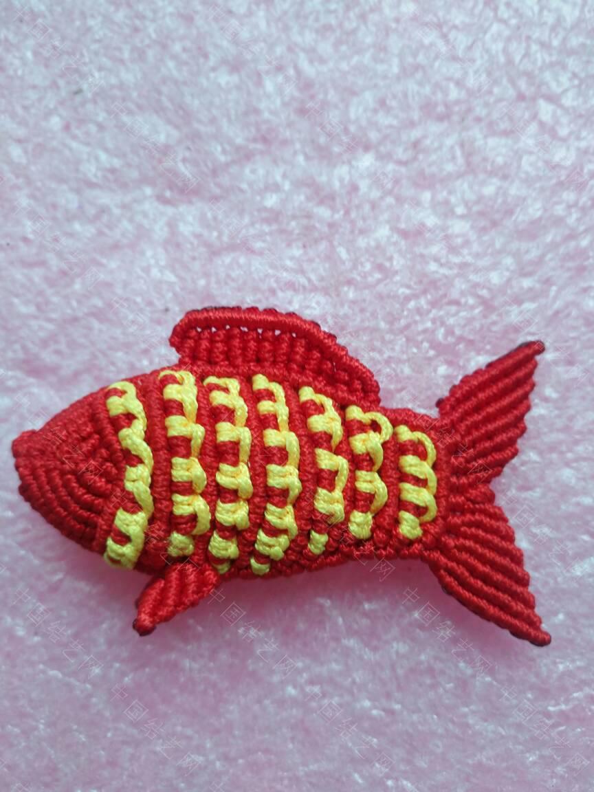 中国结论坛 鱼 鱼类大全,鱼的图片,鱼的种类,观赏鱼,鱼类大全名称图片 作品展示 155920y2d050nxq0qeu5ag