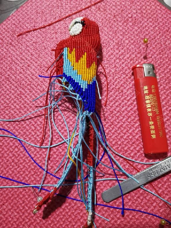 中国结论坛 鹦鹉  作品展示 235055j4bz4kh1pgbbiubz
