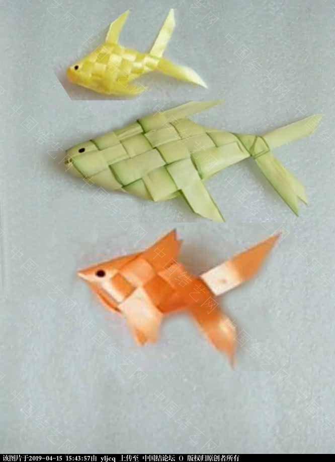 中国结论坛 求这条大鱼的编织方法?  结艺互助区 154332m64llm24qnx3jlhj